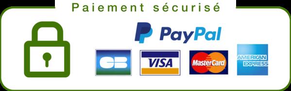 paiement sécurisé safebbk